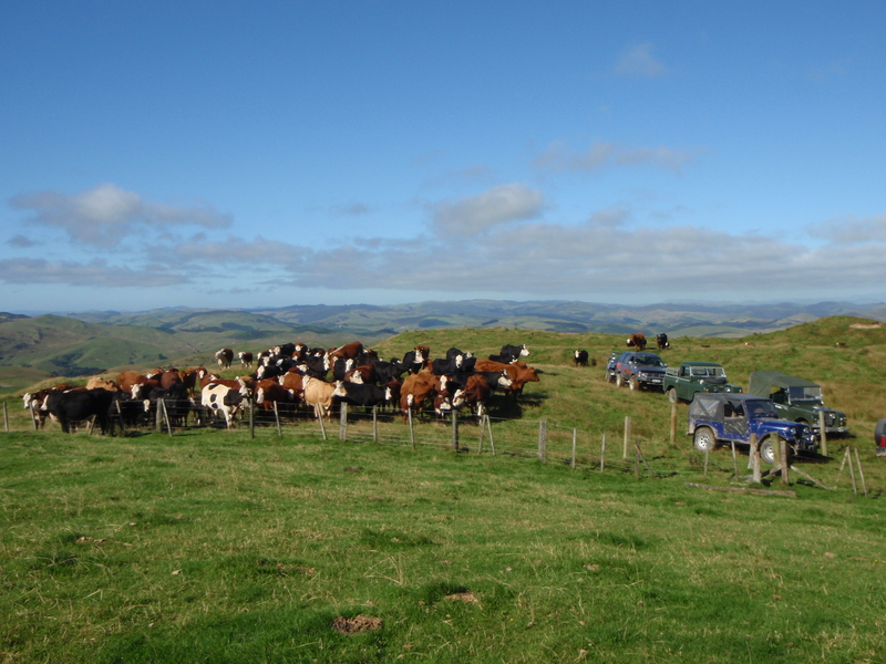A 4WD group touring over the farm
